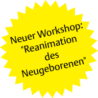 Workshop - Reanimation des Neubegorenen